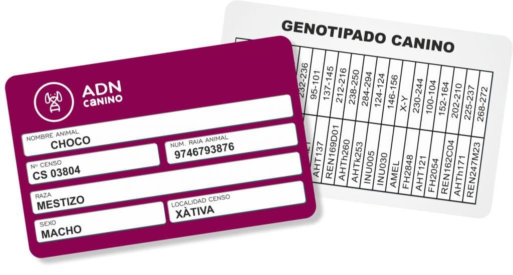 ADN Canino tarjeta genotipado canino.